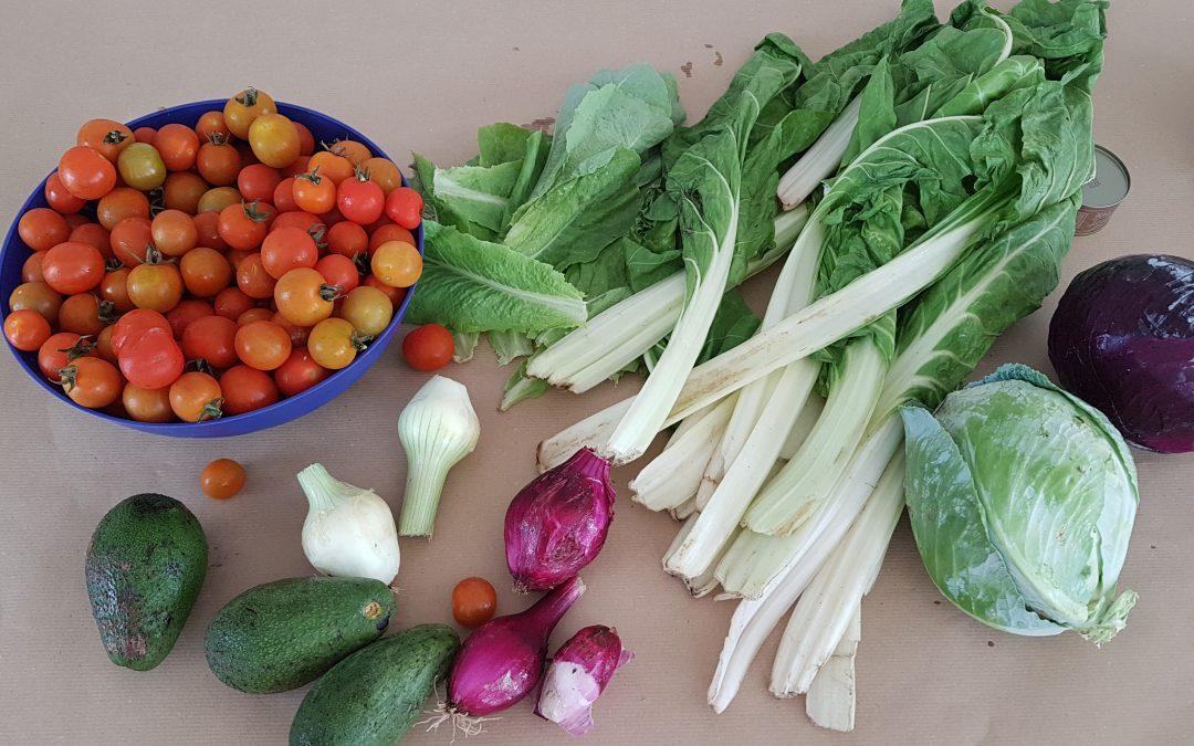Semana de la alimentación saludable