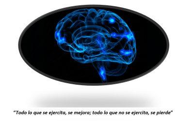 Resultados del programa de Neuroestimulación Cognitiva
