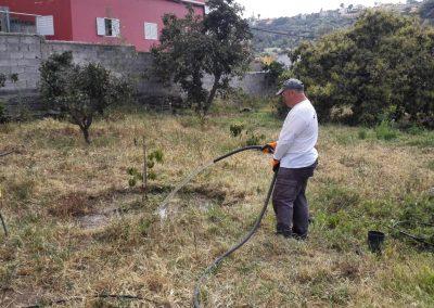 Continuamos con el Proyecto de Agricultura