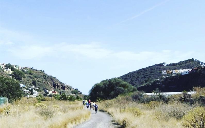 Senderismo: Santa Brígida-Carretera La Calzada