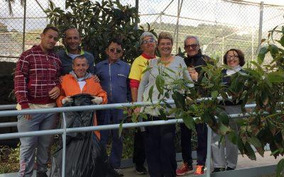 Formación de Auxiliares en Trabajos Forestales